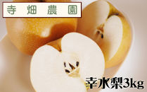自然豊かな山陰からおいしい幸水梨をお届け!3kg(DK101SM)