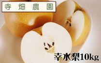 自然豊かな山陰からおいしい幸水梨をお届け!10kg(DK102SM)