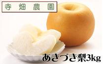 自然豊かな山陰からおいしいあきづき梨をお届け!3kg(DK105SM)