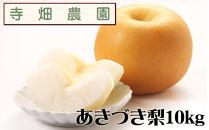 自然豊かな山陰からおいしいあきづき梨をお届け!10kg(DK106SM)