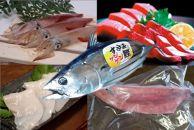 【すさみ熟成】ケンケン鰹と赤いかセット