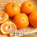 デコポンと兄弟の高級柑橘厳選!和歌山有田の濃厚はるみ 約10kg(Sサイズ)