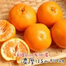 デコポンと兄弟の高級柑橘厳選!和歌山有田の濃厚はるみ 約4kg(2L又は3Lサイズ)