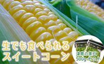 【期間限定】生でも食べられる津南町のスイートコーン10本と茶豆500gのセット
