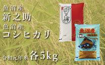 中魚沼産「新之助」5kg+魚沼産コシヒカリ「金印」5kg食べ比べセット(令和元年米)