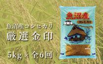 【定期便】魚沼産コシヒカリ「金印」高食味米5kg×全6回(令和元年米・6ヶ月連続お届け)