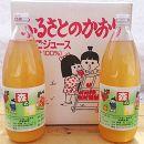 【須藤農園】りんごジュース 1,000ml×3本