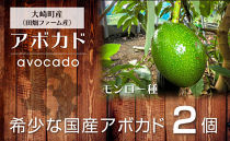 【先行予約】滑らかな食感と濃厚な旨み!アボカド(モンロー種)2玉
