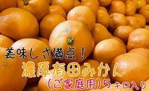 ■[2019年11月~発送]美味しさ満点!濃厚有田みかん 5kg【ご家庭用/サイズ混合】