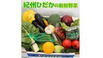 紀州の野菜・果物セット(15~20品目詰めわせ)