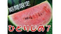 【和歌山産】小玉すいか ひとりじめ(2~3玉)