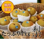 旬の美味しさをお届け!豊水梨 4kg(9~12玉)