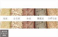 高級食材!旭川産の豆選りすぐり「豆5人衆」