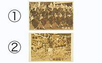 徳島県産木材を使用したMDF製PostCard 【NE-01】
