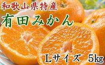 [厳選]紀州有田みかん5kg(Lサイズ・赤秀)