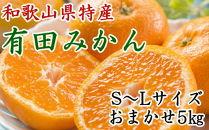 [厳選]紀州有田みかん5kg(S~Lサイズおまかせ・赤秀)