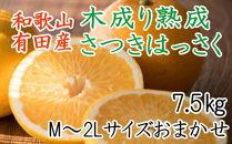 こだわりの和歌山有田産木成り完熟八朔「さつき」 M~2Lサイズおまかせ 7.5Kg入り