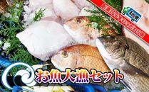 【定期便4回】創業100年の魚屋さんが選び抜いた旨い鮮魚直送便~