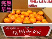 【完熟早生・有田みかん】『特秀』LまたはMサイズ/5kg