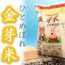 令和元年産金芽米ひとめぼれ4.5kg