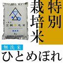 【無洗米】江刺金札米ひとめぼれ無洗パック米2kg×5袋 特別栽培米