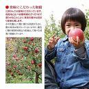 江刺りんご トキ3kg(8~10玉)【150個限定・9月30日までの受付】ブランドフルーツ厳選