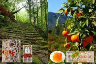 熊野古道と南紀みかんの季節詰め合わせ