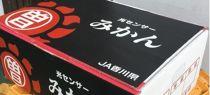 【ポイント交換】三豊の光センサー選別みかん<約3kg×2箱>