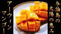 【ギフト用】【2020年発送】南の島ヨロンからお届け!田畑農園の完熟マンゴー1.0kg(2~3個)