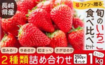 長崎県産旬のいちご1kg苺ファンへ贈る食べ比べセット(250g×4パック)