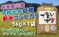 新米!抜群の味と香り 丹波篠山産コシヒカリ5kg×1