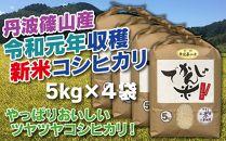 新米!抜群の味と香り 丹波篠山産コシヒカリ5kg×4