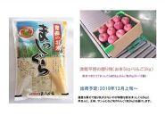 【12月発送】津軽平野の贈り物(お米5kg+りんご3kg)