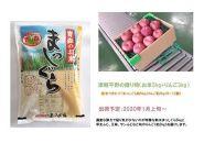 【2020年1月発送】津軽平野の贈り物(お米5kg+りんご3kg)
