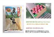 【2020年2月発送】津軽平野の贈り物(お米5kg+りんご3kg)