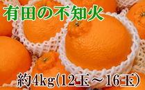 ■【濃厚】有田の不知火約4kg(12玉~16玉おまかせ)[2020年2月~発送]