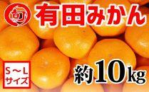 有田みかん 約10kg(S~L)〔サイズおまかせ〕 旬の味覚市場