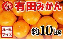 有田みかん 約10kg(2L~3L)〔サイズおまかせ〕 旬の味覚市場