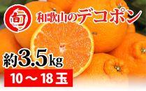 デコポン 約3.5kg(10~18玉)〔サイズおまかせ〕 旬の味覚市場