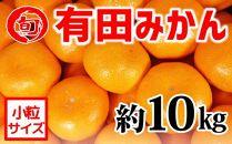 有田みかん 約10kg(小粒2S~3S)〔サイズおまかせ〕 旬の味覚市場