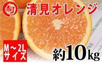 清見オレンジ 約10kg(M~2L)〔サイズおまかせ〕 旬の味覚市場