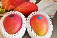 【2019年発送分】【大玉サイズ】お日様の恵み。奄美のあま~い絶品マンゴー(1.4kg/優品)