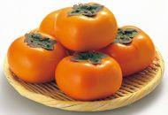 2020年9月以降発送【本場】和歌山県九度山町産平核無柿<ご家庭用>10kg