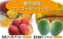 【2020年発送】豊見城産マンゴーセット(大)