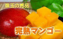 大崎町産 南国の恵み 冷凍完熟マンゴー