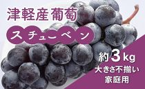 津軽産葡萄スチューベン(大きさ不揃い家庭用)約3kg
