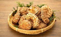 露地栽培乾燥椎茸