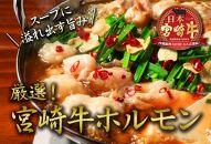 安楽畜産 厳選宮崎牛ホルモン500g