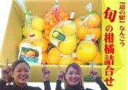 口コミ日本一の道の駅なんごう 旬の柑橘詰め合わせ