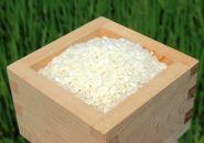 滋賀県産みずかがみ 白米5kg